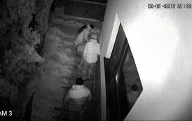 Teroarea continua. Hoardele de tigani au intrat în locuinta senatorului Agrigoroaiei si i-au distrus conducta de gaz (Video)