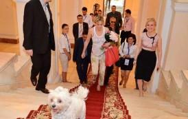 Parada canina si concursuri inedite pentru animale de companie, sambata, la Iulius Mall