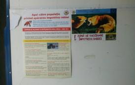 Zona de vaccinare impotriva turbarii, la intrarea oficiala a Primariei Iasi
