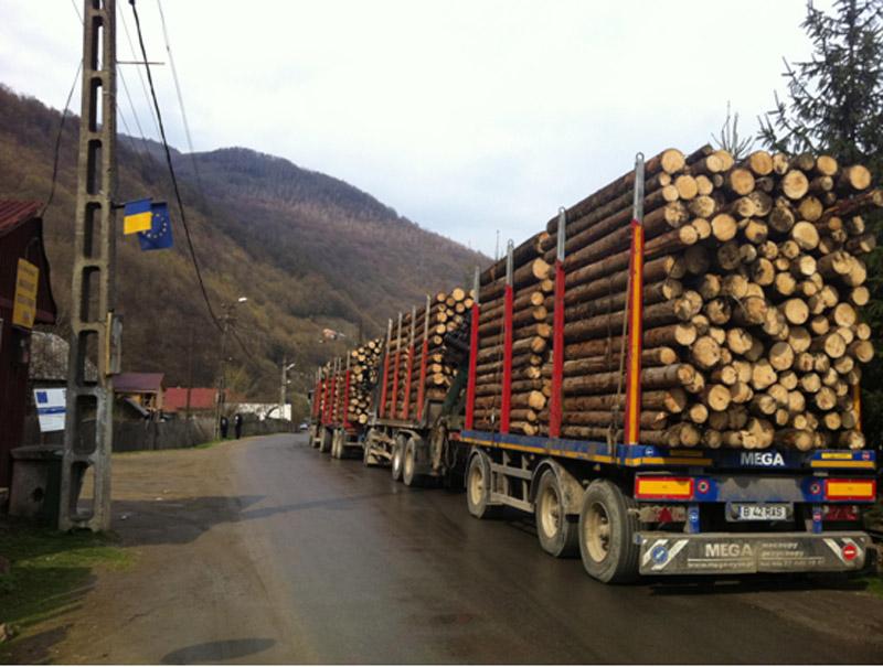 Pretul lemnului de foc a crescut cu 50% din cauza disfunctionalitatilor in aprovizionare