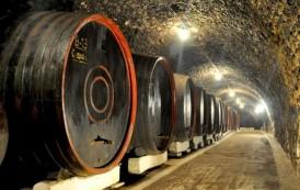 Pont de sarbatori! Fisc-ul iesean scoate la vânzare 300 mii de litri de vin, la jumătate de pret