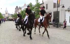 Politia Locală a cumpărat încă trei cai de patrulare. Investitia se ridica la peste 20.000 euro