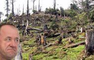 Apocalipsa dupa Mihalache. Dezastru ecologic la Schitu Duca. Copii scosi la protest impotriva defrisarilor