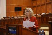 Deputatul Camelia Gavrilă subliniază importanta  stagiilor de practică în specialitate si a legii  INTERNSHIP-ului
