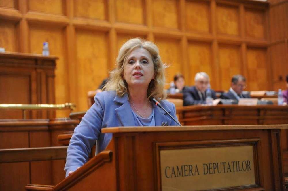 Deputatul Camelia Gavrilă propune solutii pentru actuala criză a manualelor scolare