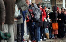 Absorbtie incredibila a somerilor pe piata muncii la Iasi. Doar 2,78 % din populatia activa se mai regaseste in evidentele AJOFM