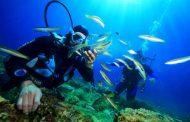 """Seratele """"Procopiu"""" la Palat continuă cu """"Fascinația lumii subacvatice"""""""