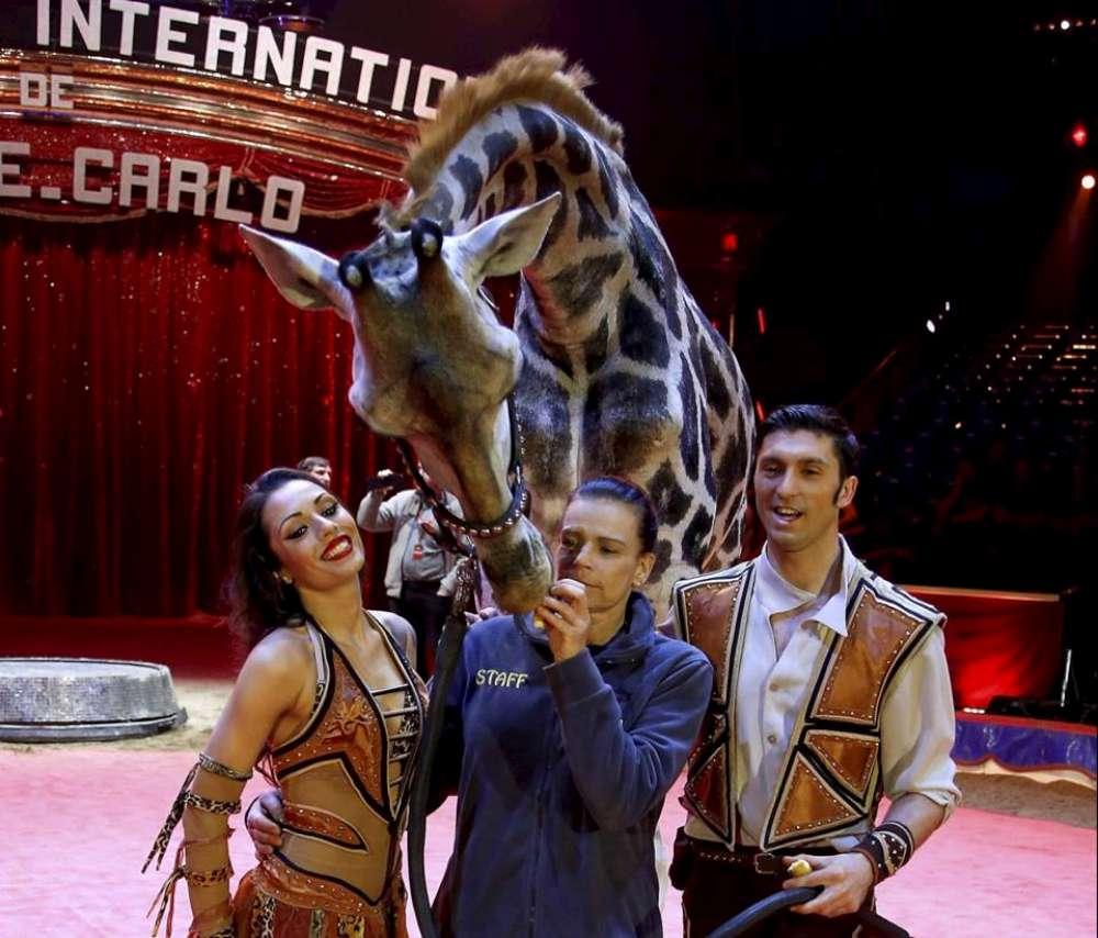 Ieşenii sunt invitaţi la Circul Americano, prezent in Iasi pana pe 3 iunie