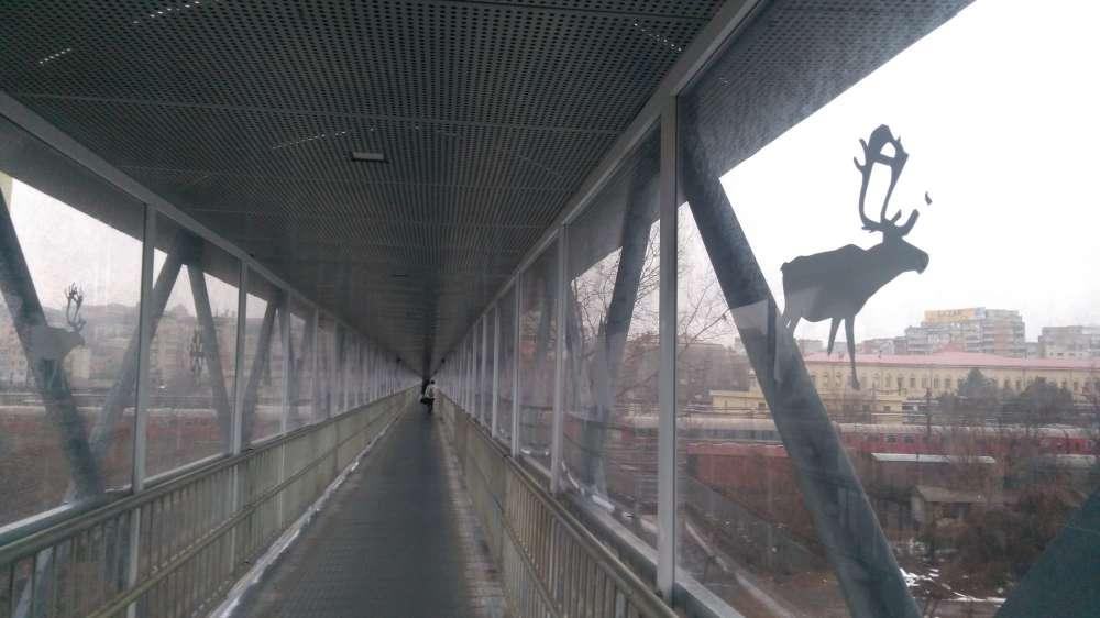 Pasarela de la gara, o afumatoare umana de peste 600 mii euro. Persoanele cu dizabilitati nu au acces pe cea mai mare pasarela din Iasi