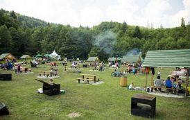 O firma din Sibiu amenajeaza zona de picnic de pe C.A. Rosetti cu gratare si foisoare