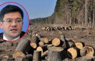 UE pune drujbele pe ministrul Alexe si grupul de interese care defriseaza padurile Romaniei