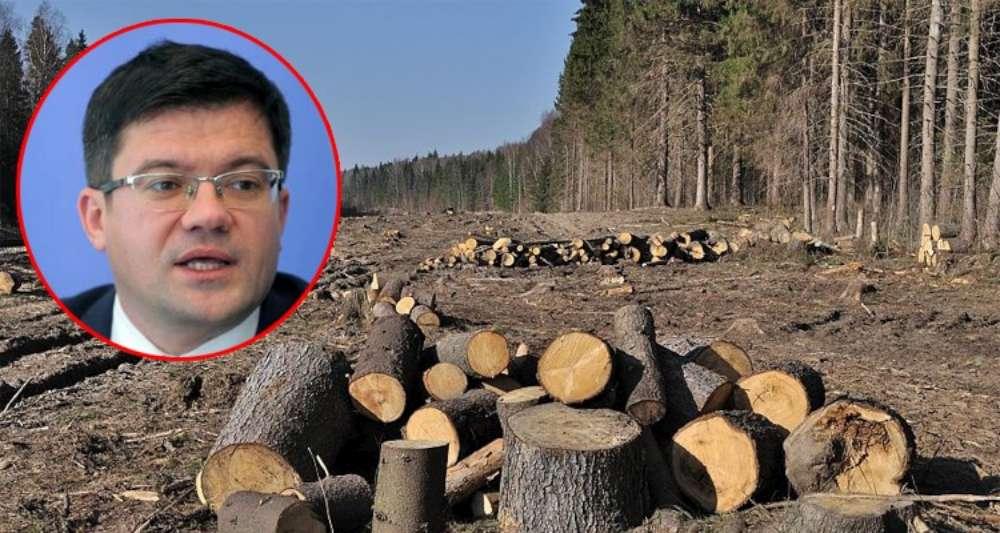 Apocalipsa dupa Alexe! Doar 1% din ariile protejate sunt ferite de tăieri. Pact civic pentru  salvarea ariilor protejate Bârnova – Repedea