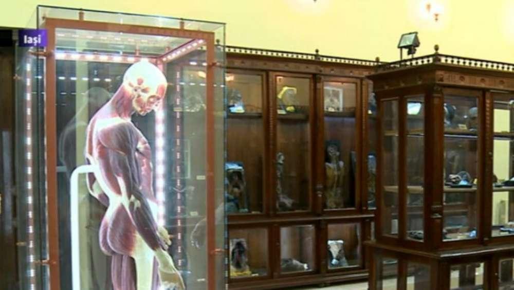 Muzeul de anatomie al USAMV Iași va fi redeschis