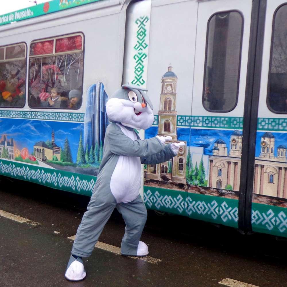 Iepurilă sosește la Iași cu tramvaiul!