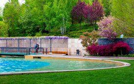 GALERIE FOTO: 5 motive să iubim primăvara în parcul Palas: culoare, vitalitate, bună dispoziţie, plimbare și relaxare